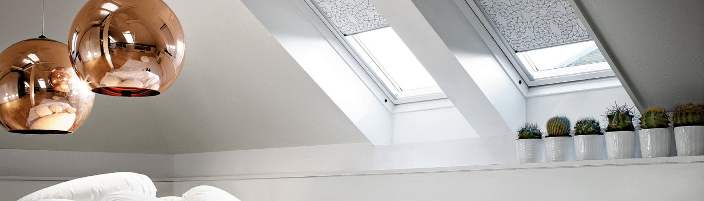 Rizzi_Commerciale_Velux_
