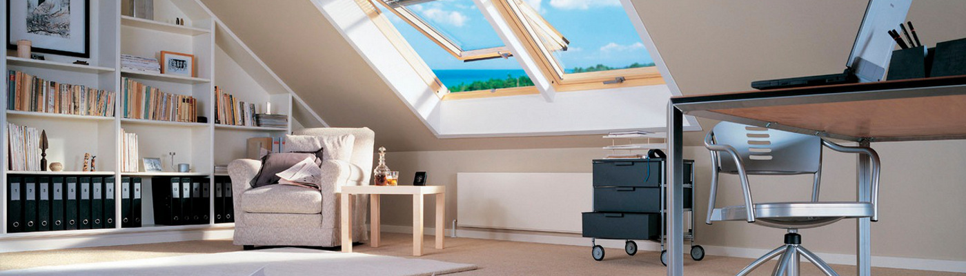 Rizzi_Commerciale_Velux_2__